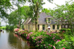 wat lekkernijen Amsterdam en Rotterdam zich verbergt